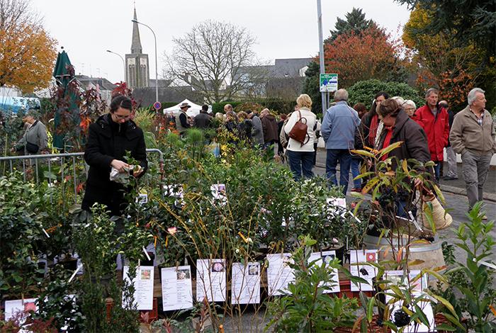 La Foire aux arbres organisée par Fleurir Quéven