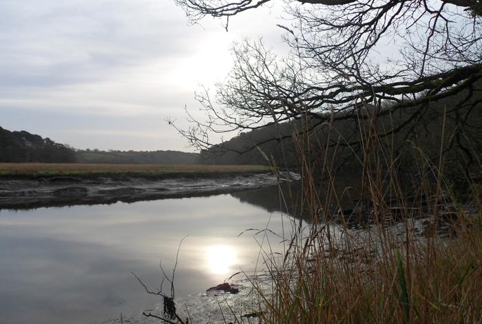 L'estuaire à Bon Secours en hiver (Syndicat du Scorff)