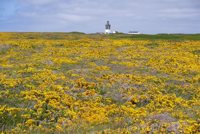 «Les îles bretonnes à pied», diaporama commenté par Claude Derollepot