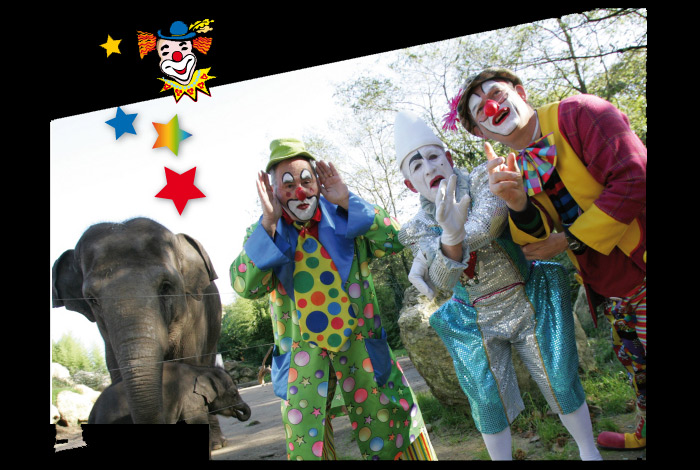Grand spectacle de clowns des Tontons Yoyos