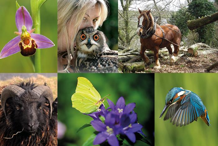 Journée de la biodiversité