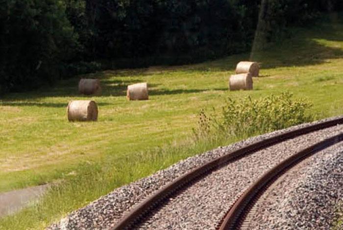 SNCF Réseau et produits phytosanitaires : concertation en ligne
