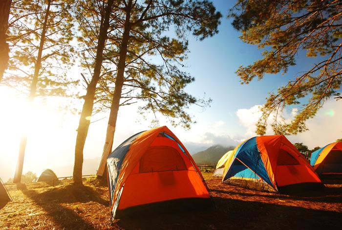 Programme des mini-camps d'été